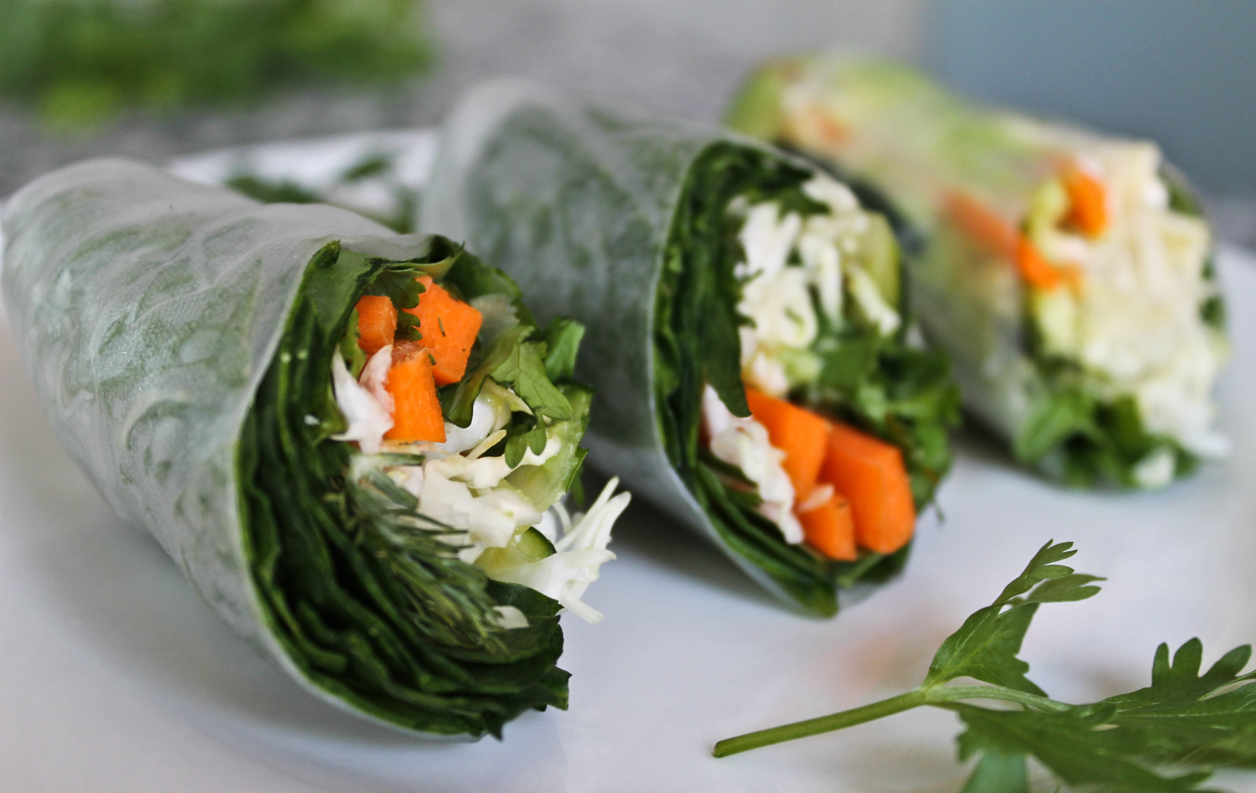 Rice Paper Wraps - The Wellness Workshop