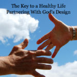 The Wellness Partnership – Partnering with God's Design